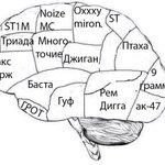 ШОК! Ученые из Сколково сделали снимок мозга умственно отсталого человека. http://t.co/oIfz2RCn4t