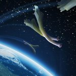 Essai du Pays de Galles ! Dan Biggar met les poireaux sur orbite. #FRAPdG #FRAGAL #XVdeFrance #6Nations http://t.co/2diyqDiMp4