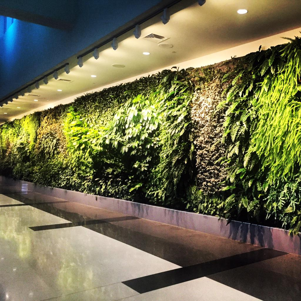 WOW!   Check out this amazing @GreenOverGrey Interior Living Wall at BHM Airport!   cc: @greengaljo http://t.co/ZbKr60T3uV