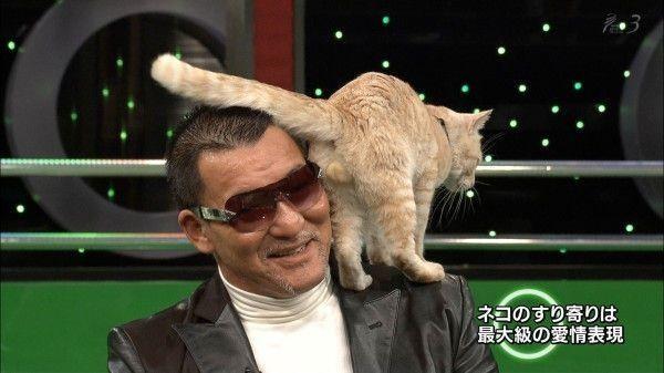 プロレスラー蝶野正洋さんの高感度が限界突破する画像 http://t.co/SWn9823m1L