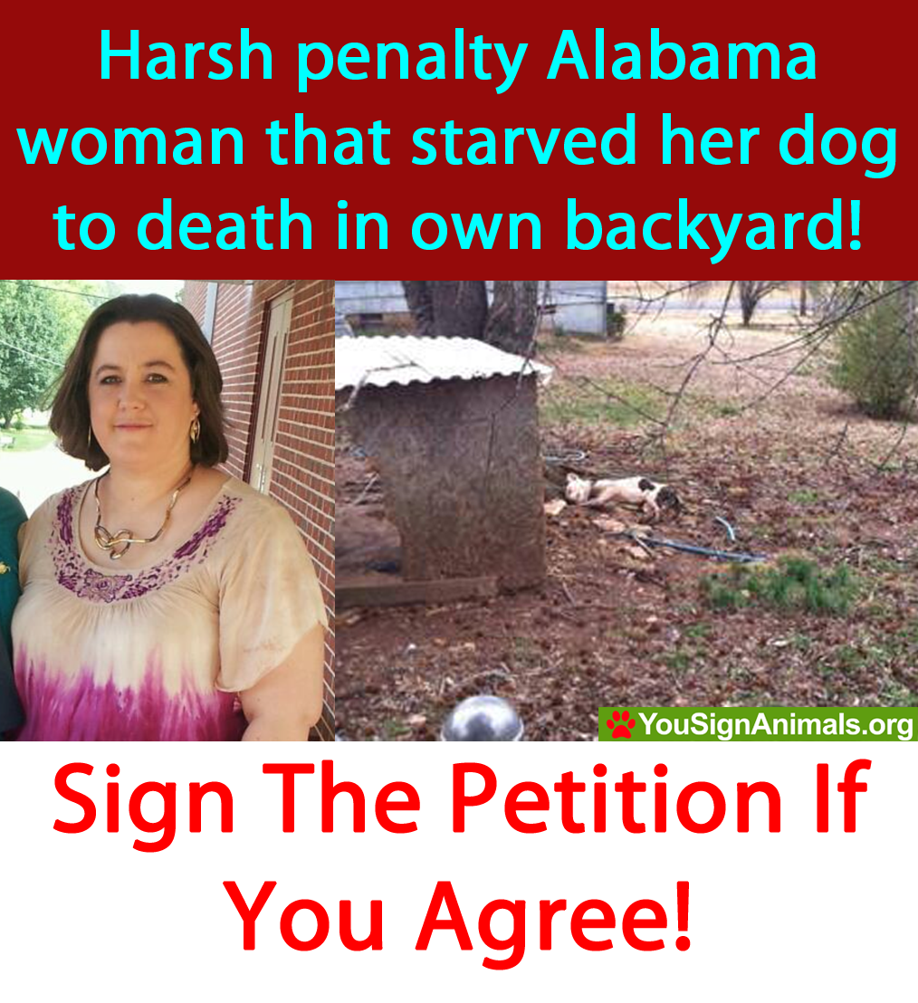 Harsh penalty for Alabama woman that starved dog until it passed away! Sign! & RT! http://t.co/MZYk3W4FRj … http://t.co/zWpWooB1H9