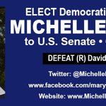 "ELECT Democratic Nominee @MichelleNunnGA 2 #GA #Senate DEFEAT (R) David Perdue! @GeorgiaBlue01 #CIR #OFA http://t.co/5RxO8WvETk #TNTweeters"""