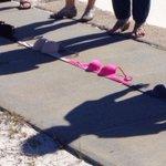 RT @JFitzhughPhoto: Bras on Broad collecting bras for the #gulfcoastWmnCtr for nonviolence #breastcancer awareness @sunherald http://t.co/c5TnodjqxE