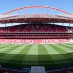 RT @domadordepeidos: De tantos estádios bonitos na Europa o nosso é o melhor e o mais lindo, somos GRANDES,AMOTE BENFICA! #CarregaBenfica http://t.co/qJEmrHDU6o