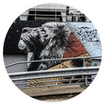 Some nice street art I saw on the way home today #lion #streetart #Sheffield http://t.co/lF53hfHMP1