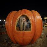 RT @ijustine: Found my pumpkin. Already carved. A bit heavy.. http://t.co/KhmKenSyuc