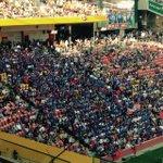 RT @michaeljnrl: Samoan supporter bay. #4Nations #engvsam http://t.co/U6VyXvxM2b