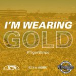 RT if youre wearing GOLD - check the map at http://t.co/Rhn5ggXpCl! #TigerStripe #MIZ103HC http://t.co/bFuw1cjWac