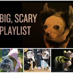 50 spooky songs on our all-Canadian playlist (+ adorable dogs in costumes!) http://t.co/ElLGR595Gr http://t.co/tYNQXlNIcV