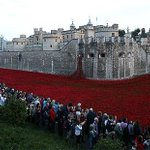 People having a pop at our poppies just makes @KTHopkins see red: http://t.co/PugOZ4p01s http://t.co/ABPFuxlW8r
