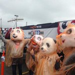 Plastic-bagged pandas and more scenes from today's victory parade. http://t.co/uqr9KTkmUh http://t.co/D1PRvCJqWX