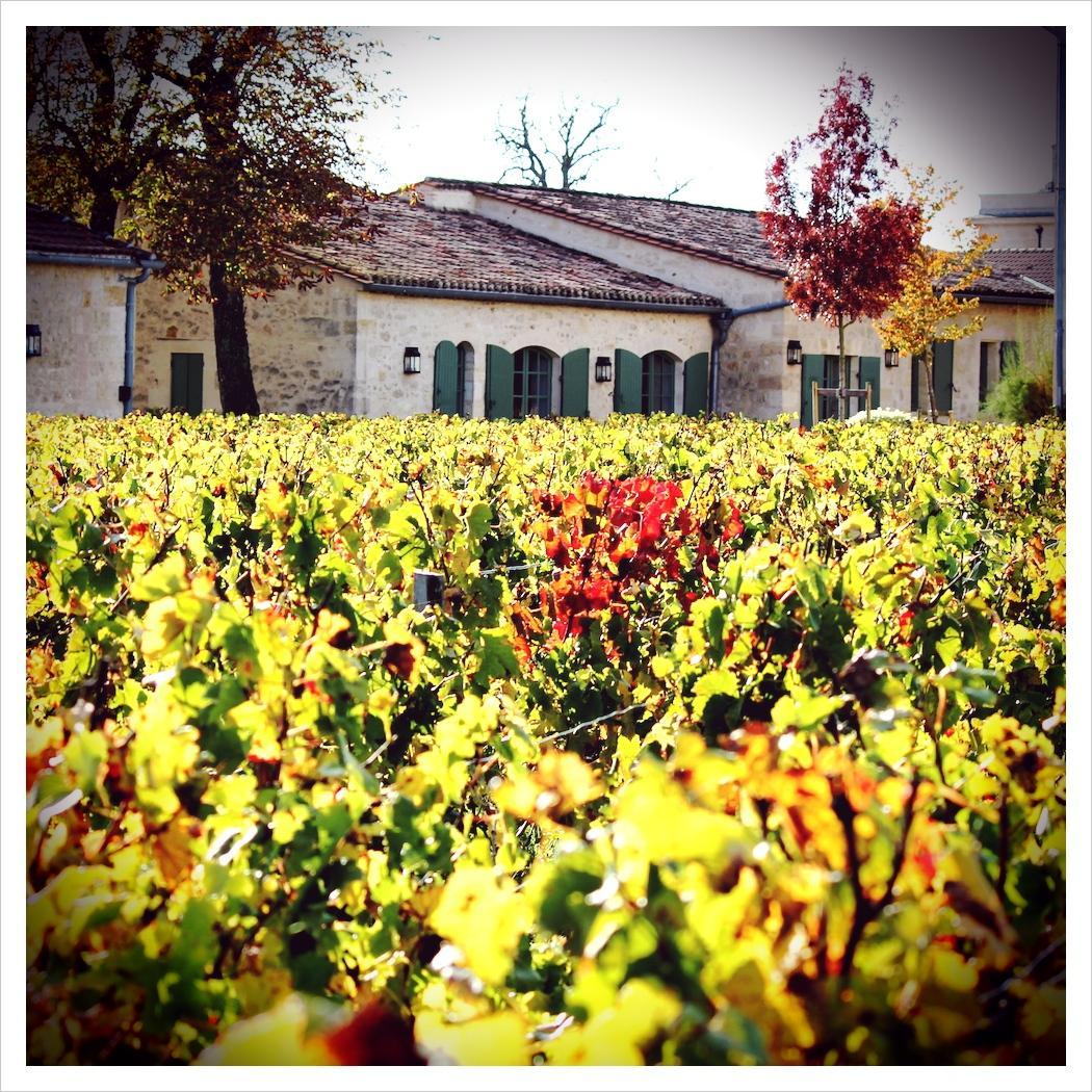 #Autumn colours http://t.co/kNX4bhUUkv