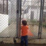 Los jueces de Protección aun no levantan la prohibición de visita a Leopoldo López trasladada a su hijo como castigo http://t.co/s9Kluztzin