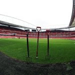 """""""@Arsenal: Pitch perfect... Emirates Stadium is ready for a loss #AFCvMUFC. Are you? http://t.co/A8DW5vI4or"""""""