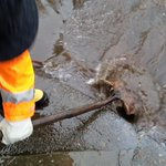 Please help out @PBOTinfo! Clean out drains near you to prevent street flooding #pdxtst http://t.co/OxkNtjLOtS