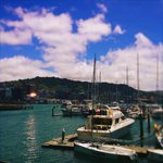 """""""Cant beat #Wellington on a good day"""" day? http://t.co/reCHl4eOBu"""