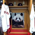 The Red Sox seem happy about the Kung Fu Panda, Pablo Sandoval, joining the team. http://t.co/aJu1HjA2HM http://t.co/g0yandCyby