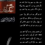 Awesome Poetry by @FARAZFAYYAZSHEI for 30th November. Kindly RT this classic piece of poetry #LarhoMujhayAoNa http://t.co/fYPWnhuz0y