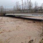 Puyallup river at Calistoga St bridge. #WAflood http://t.co/onkfV9YYkS