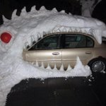 """@MeredithFrost: Meanwhile, in Buffalo.. (Photo: Mikaela Lake) http://t.co/PD5gq6VUaB http://t.co/eIZyirE1nG"" @breadchastick03"
