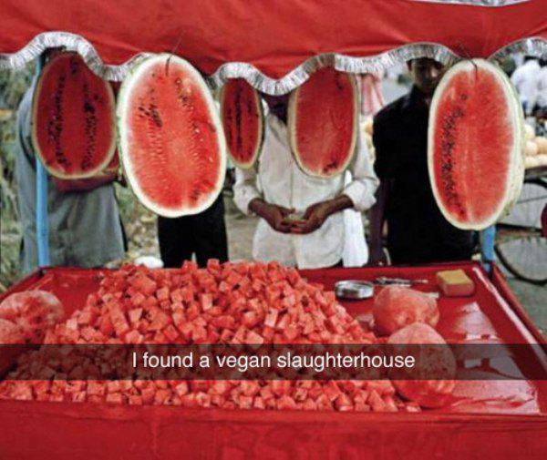 I found a vegan slaughterhouse... http://t.co/8wIDDvn4UC