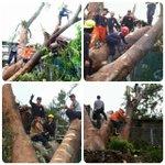 Evakuasi Pohon Tumbang Jl. Pangaritan @PRFMnews @infobdg @infobandung @se_bdg @ClickBandung @GalamediaOnline http://t.co/TuIMAxSjHs