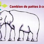 Combien de pattes à cet éléphant? a)6 b)8 c)4 d)Aucune de ces réponses http://t.co/lrqFKITZI2