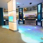 Galería de Imágenes, #MUVI Museo Universitario de la Vida @Ximbal_Oficial @ferortegab http://t.co/W0mWwxVQEA