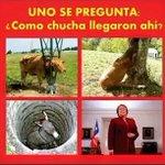 #TeSigoDeUnaSiEresChileno y si piensas lo mismo! ???????? http://t.co/kVgl4pMFtZ
