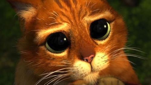 """""""Posso darle un abbraccio?"""" E tutti quelli che sono davanti a #MasterChefit diventano così: http://t.co/mXx81kFoPc"""