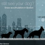 RT @BBCNewsUS: How will your four-legged friend fare in the snow? BBC's @franzstrasser is keeping track http://t.co/OyyDWBCDCY