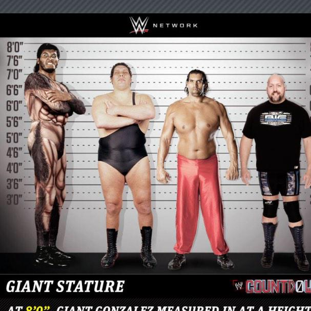 Giant gonzalez height