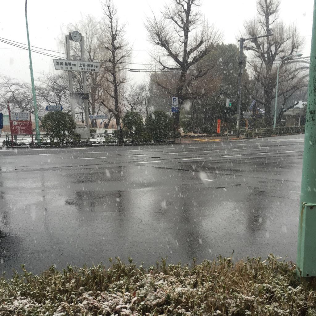 東京上野の雪は強くなってきた感じ? (^_^;) 歩道に積もってきていて滑りやすくなってる〜 http://t.co/5wtoCr2M64