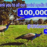 We reached 100,000 followers just in time for #SocialUN Day! Thank-you from all @UNGeneva (and the peacocks ;-) http://t.co/jt41DMrmdL