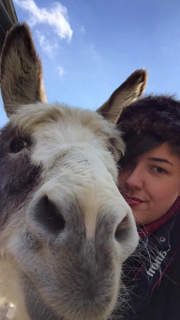 Sometimes you just need some #DonkeyLove
