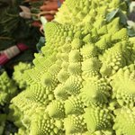 Fractalini at the farmer's market. This stuff wigs me out. http://t.co/ywUNIE5pO7