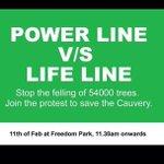 Tomorrow at Freedom Park. 11.30AM.