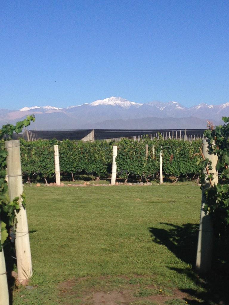 View of Mt Aconcagua from @BodegaNorton @winesofarg http://t.co/DkRf3xwZtZ