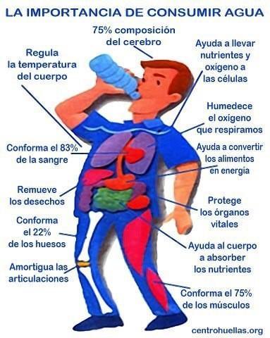FAJAS TECNOMED ® (@FajasTecnomed): Conoces la importancia de Mantener tu cuerpo hidratado? Aqui te lo explicamos. http://t.co/Wi2yQfwO