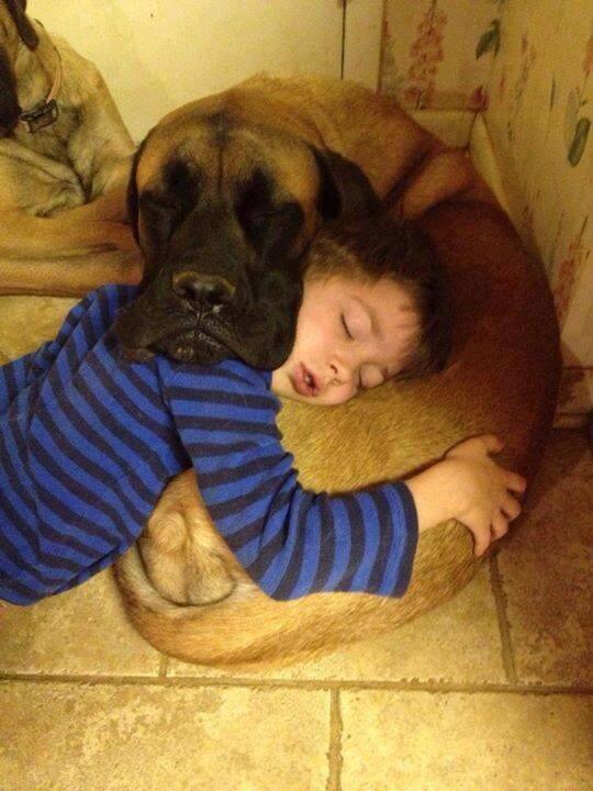 Très bonne nuit a tous http://t.co/UebkBzKkpw