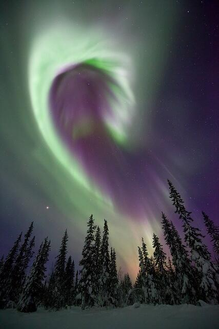 RT @ItsEarthPics: Aurora Borealis, Sweden http://t.co/HTxdIakU4W