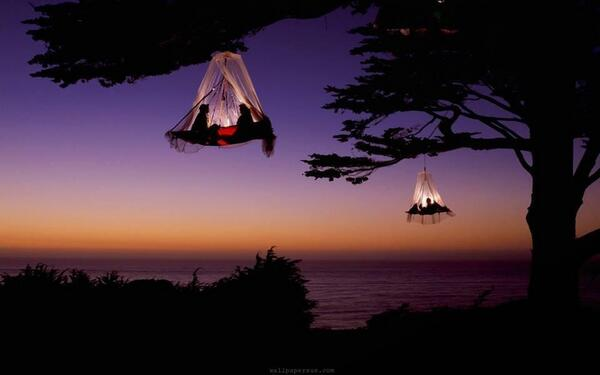 RT @TheHotelegraph: RT Camping doesn't get any cooler than these 'tree bags' at Waldseilgarten via @PictureEuphoria & @GermanyTourism. http…