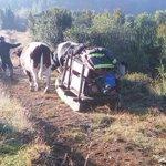 Así es como lugareños apoyaban la labor de Bomberos en el sur de Chile. Orgulloso !! http://t.co/E9f0GFJDCh