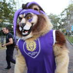 Photos: Orlando City supporters showcase their purple pride during 5K run http://t.co/Hv9WnoXiFx http://t.co/THsy6ImjXg