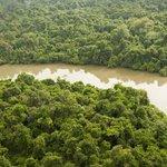 Estados brasileiros têm desmatamento acima de 100 quilômetros quadrados por ano. http://t.co/1cbZIo5Nnz http://t.co/6HMKC3JBYE