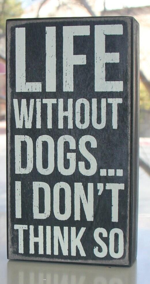Life without #dogs .... http://t.co/G8HbflUy9x