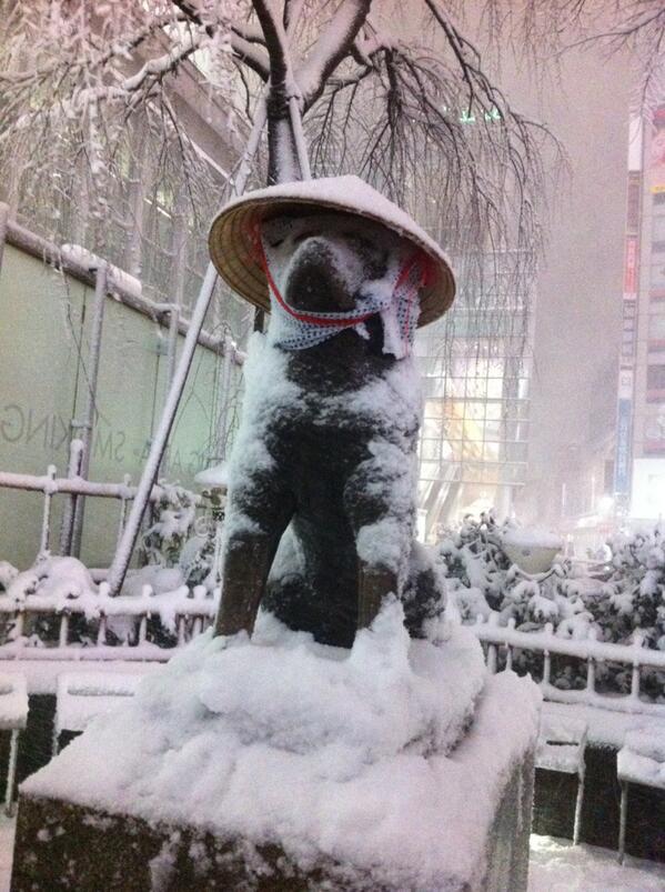 つい先ほど、24時30分過ぎの「ハチこ地蔵ちゃん」。親切な人に傘をもらえたんだね #tokyomx #大雪 #渋谷 http://t.co/ndgQ0WU0RP