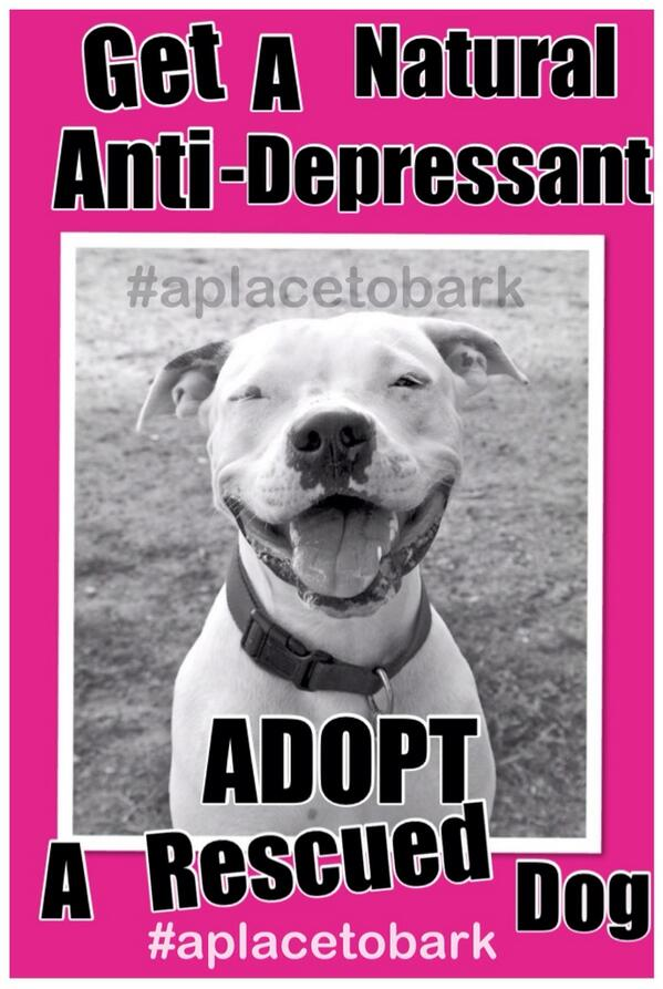 Be HAPPY!!! ADOPT Rescued Pets! #aplacetobark http://t.co/zFNj2CHkV6