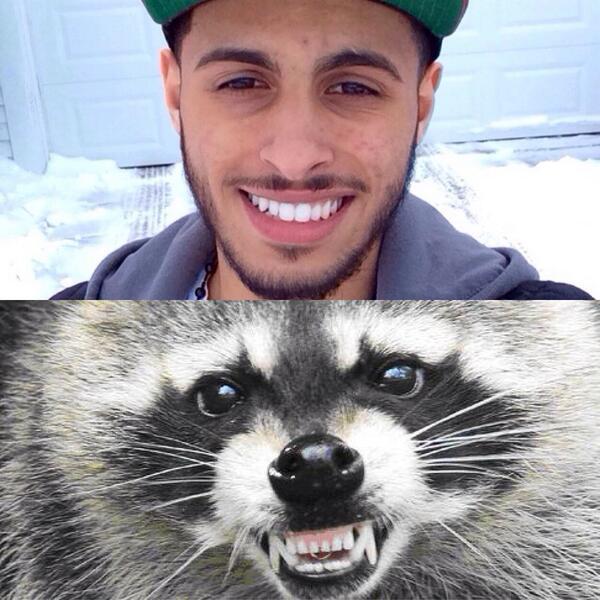 Nizzy (@NizzyJBeats): @MeekMill @FreeLaddin nigga look like a raccoon