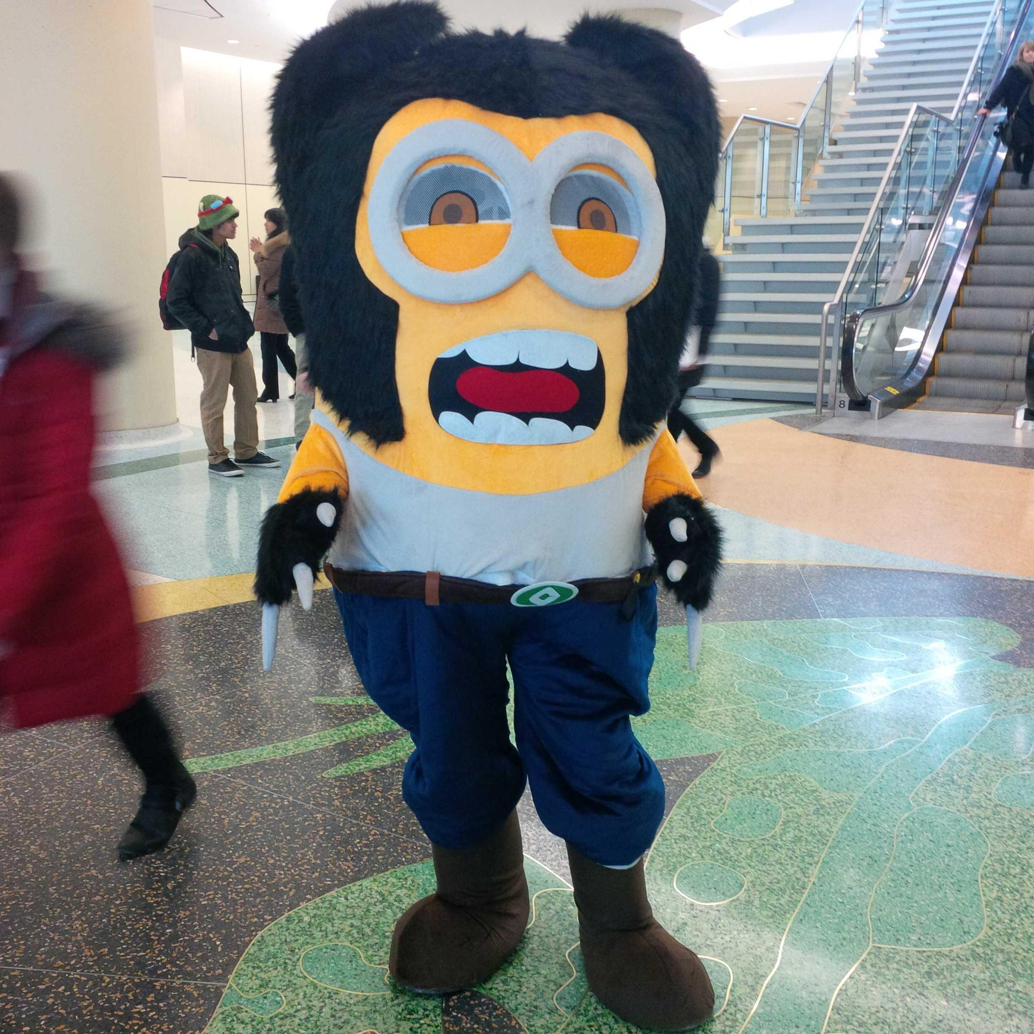Playing the invasive paparazzo with Wolverminion! http://t.co/nGn9gfx9zp